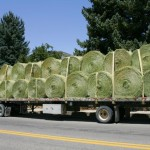 Round Bales on Semi
